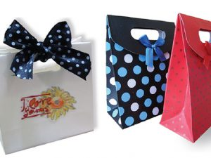 Dịch vụ in túi xách quà tặng